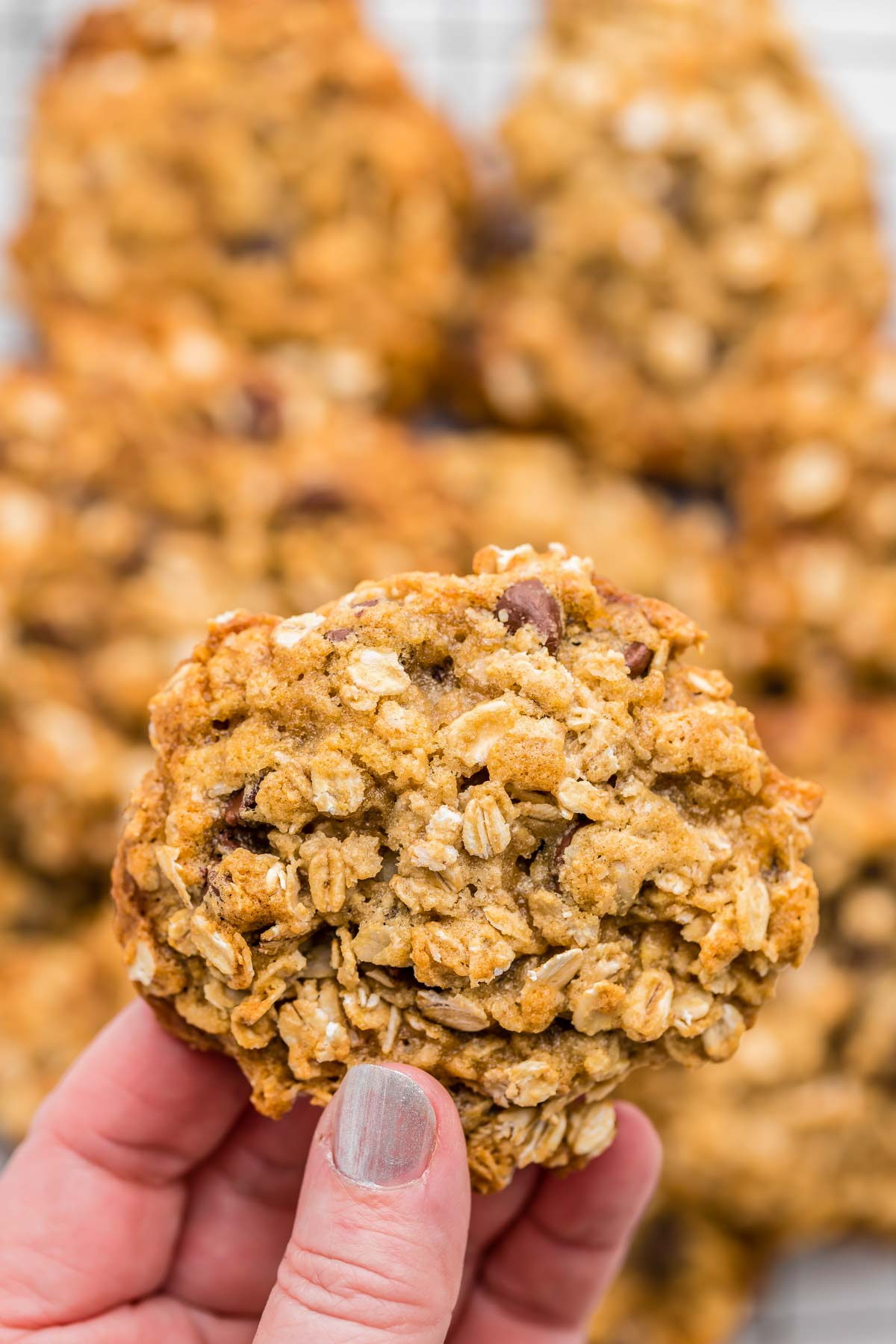 A hand holding a healthy oatmeal chocolate chip cookie