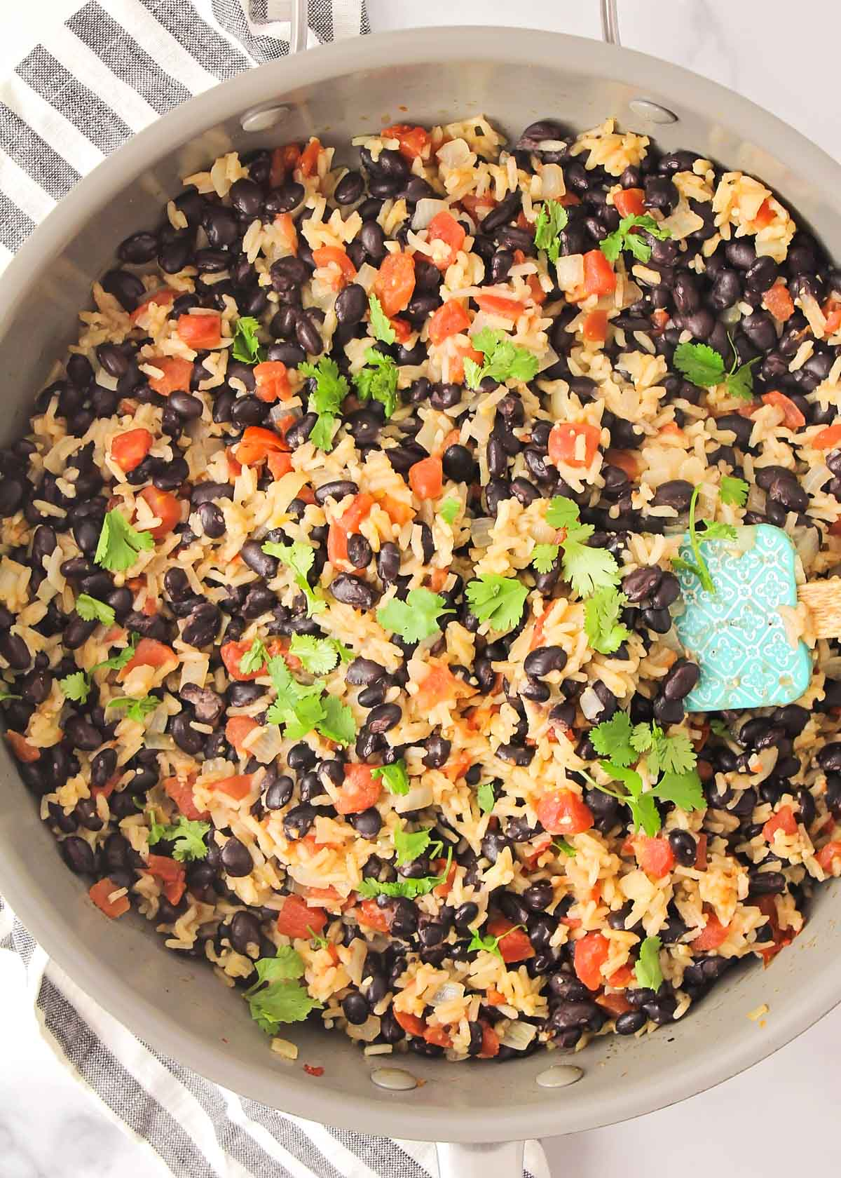 Black beans and rice topped with fresh cilantro