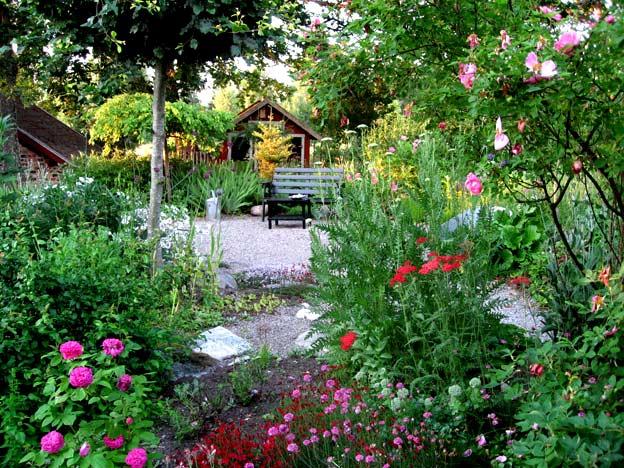 июль в саду садовые цветы
