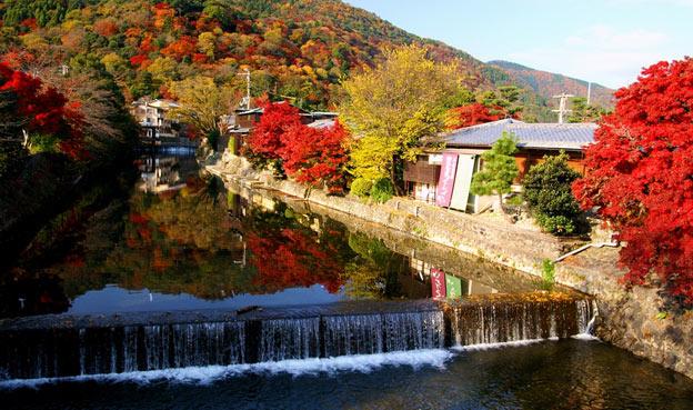 Киото ботанический сад японский сад река водопад