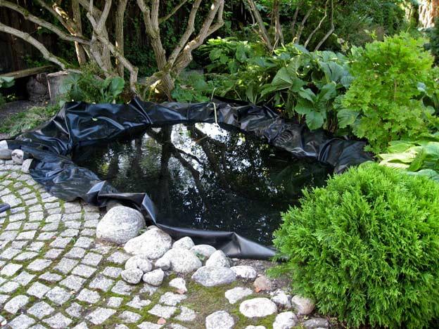 Водоем в саду своими руками: фото, как сделать в своем