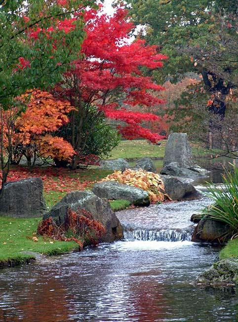 японский сад озеро водопадик бельгия хасселт