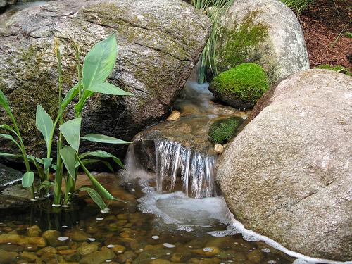 ландшафтный дизайн выставка в бостоне искусственный ручей