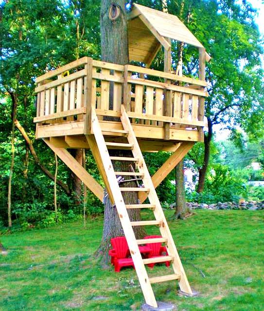 Идея детского дома на дереве