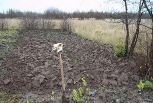 Как перекапывать землю на огороде