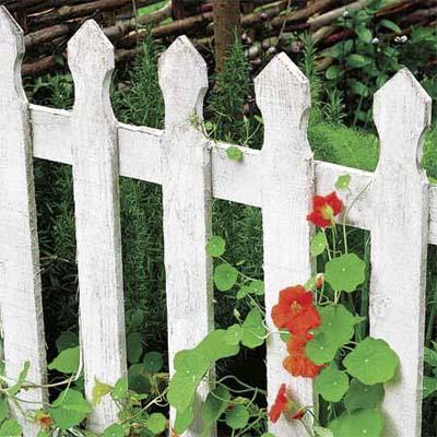 Забор из штакетника 11