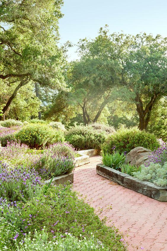 Как расположить деревья в саду
