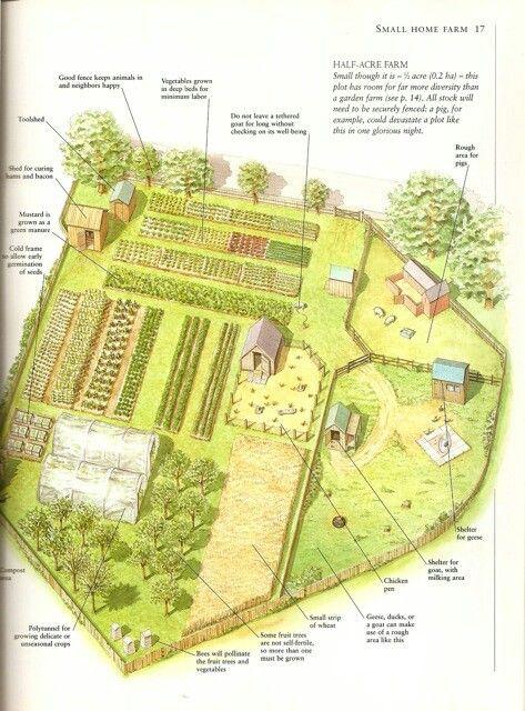 Планировка сложного огорода