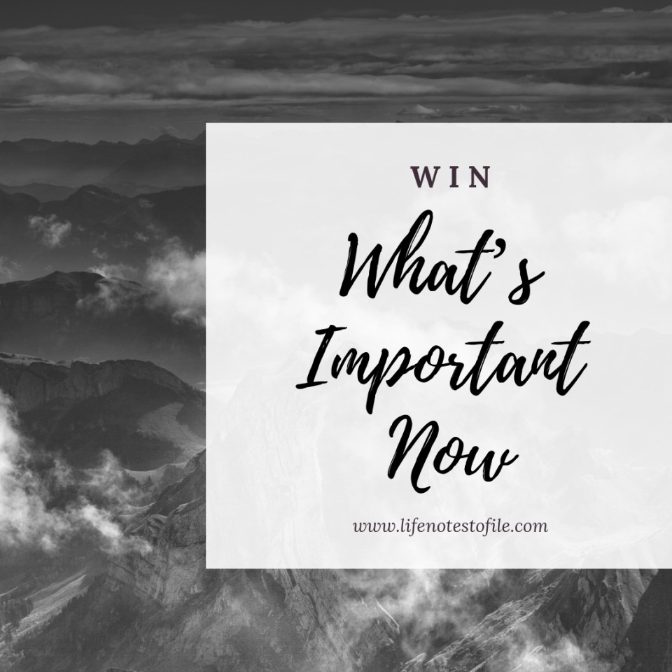 WIN What's Important Now