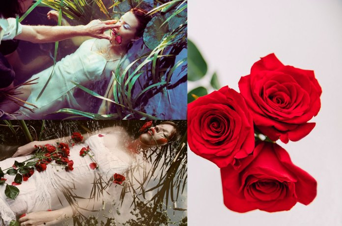 , All the gods …one rose – 4 myths & 1 legend