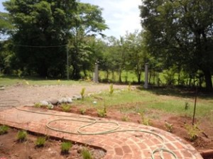 Landscaping  9 12 2012 052