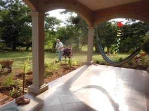 Landscaping  9 12 2012 055