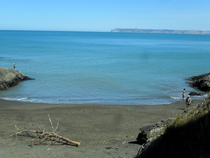 Rarangi Beach (9) 2013