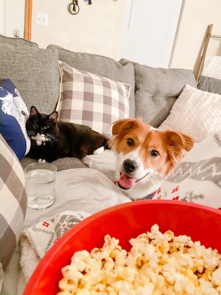 Annie and Stevie begging for popcorn