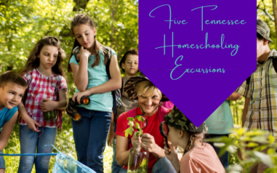 Five Tennessee Homeschooling Excursions