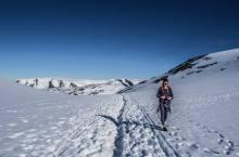At the top of the Gryteskaret, Legs walks towards the Trolltunga.