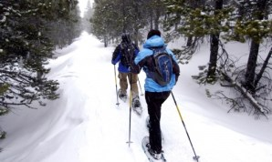 Snow Shoeing: Burns about 500 calories per hour