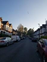 herne hill homes