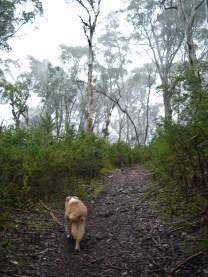 Mal is probably thinking NOOOOOOO not another hill!!!!
