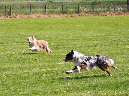 Synchronised running part 4!!! (and also more examples of how Mal has no idea what's going on AND is still taking the short cuts)