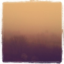 Today is all about...the foggy morning