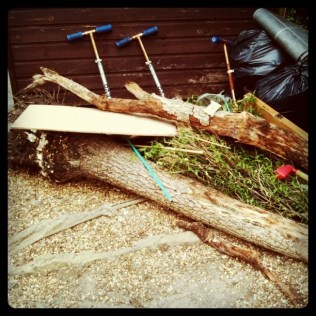 Today is all about...removing a dead tree from the in-laws garden (with a little help from the nephew)
