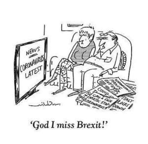 Cartoon of couple watching the coronavirus news saying 'God I miss Brexit!'