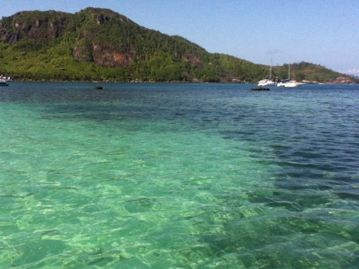 14 Best Dive Spots in The Seychelles
