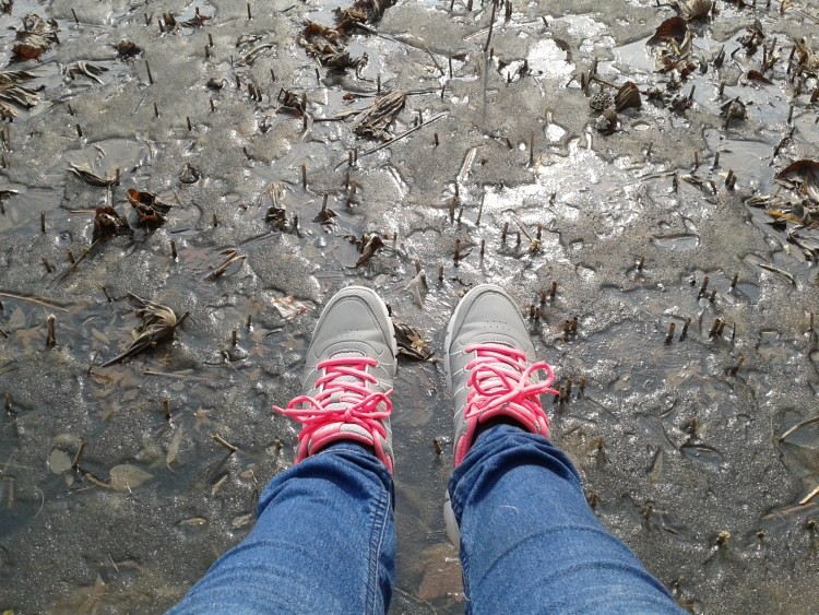 adventure, the summer palace, pink sneakers, frozen moat