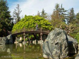 Japanese Gardens in San Jose