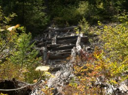 decaying log structures