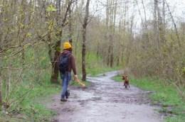 0322_NicholasTravers_A Sandy Dog Walk_02700