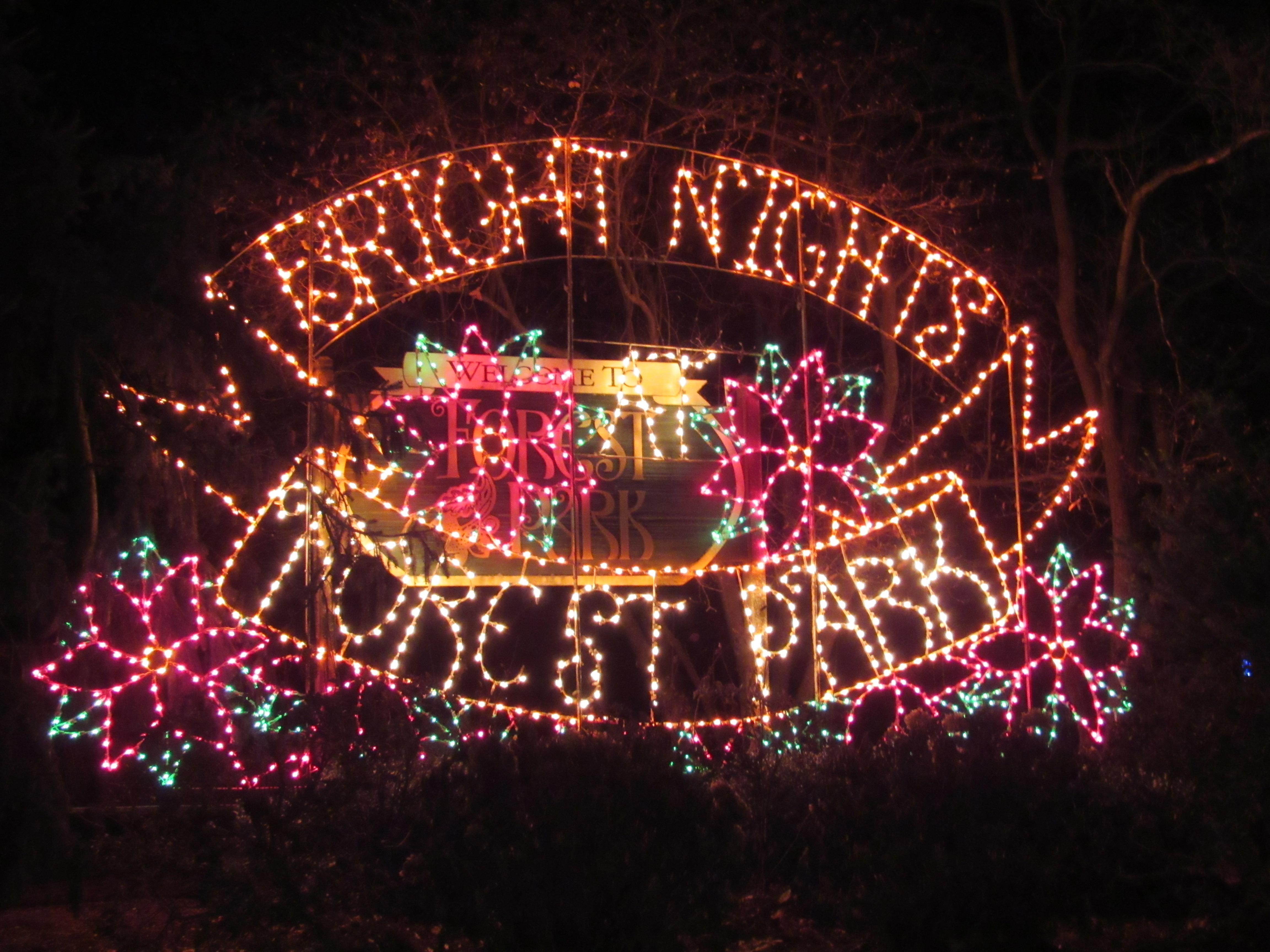Learn More About Spectacular Bright Nights