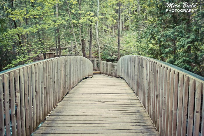 Beautiful Bridges in Ontario, Bealfountain Conservation Area,