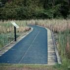 Terra Cotta Marsh in Ontario, Terra Cotta Conservation Area, Trail Ontario,