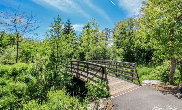 Hiking Trails in Ontario, things to see in Caledon, Beautiful Places in Ontario,