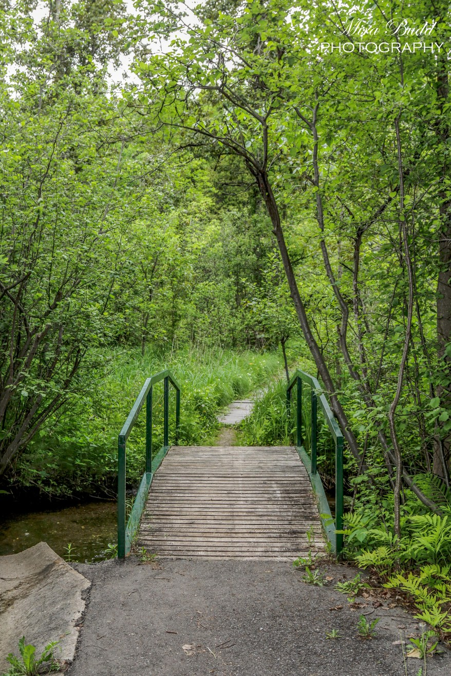 Ontario Hiking, Hiking trails in Ontario, Things to see in Caledon,