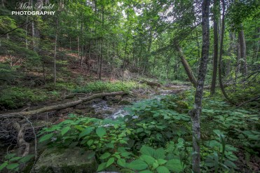 Top Hiking Trails in Ontario, Day Trips Ontario, Things to Visit in Ontario,