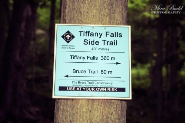 Hiking Trails Ontario, Tiffany Falls Side Trail, Things to see in Ontario,