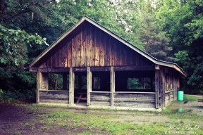 Conservation Areas in Ontario, Sheppard's Bush Conservation Area, Aurora Hiking Trails, Ontario hiking Trails, Things to See in Aurora, things to do in Aurora, Things to see in Ontario, Ontario Hiking,