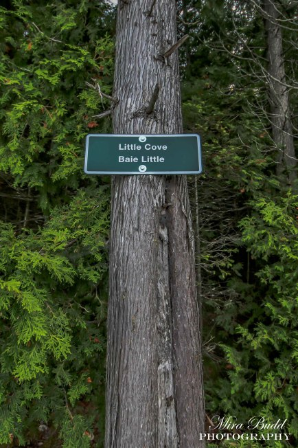 Beautiful Places in Ontario, hiking Trails Ontario, Places to See in Ontario, Day Trips Ontario, Things to See in the Bruce Peninsula,