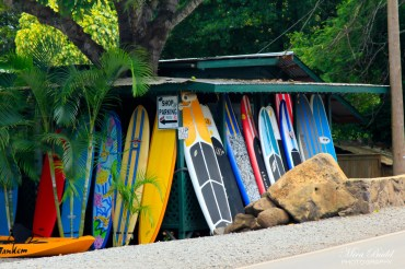 North Shore Hawaii Surfing, Places to Visit in Hawaii, Amazing Places in The World,