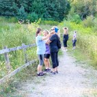 Palgrave Conservation Area, Ontario Hiking Trails, Caledon Hiking, Things to do In Caledon,