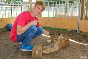 Bowmanville Zoo - Lion Cub Encounter