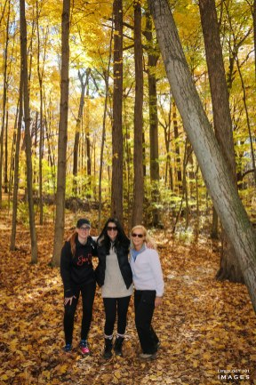 Canterbury Falls, Hiking Trails Ontario, Hamilton Waterfalls, Beautiful places in Ontario, Places to Visit in Ontario, Bruce Trail Hiking,