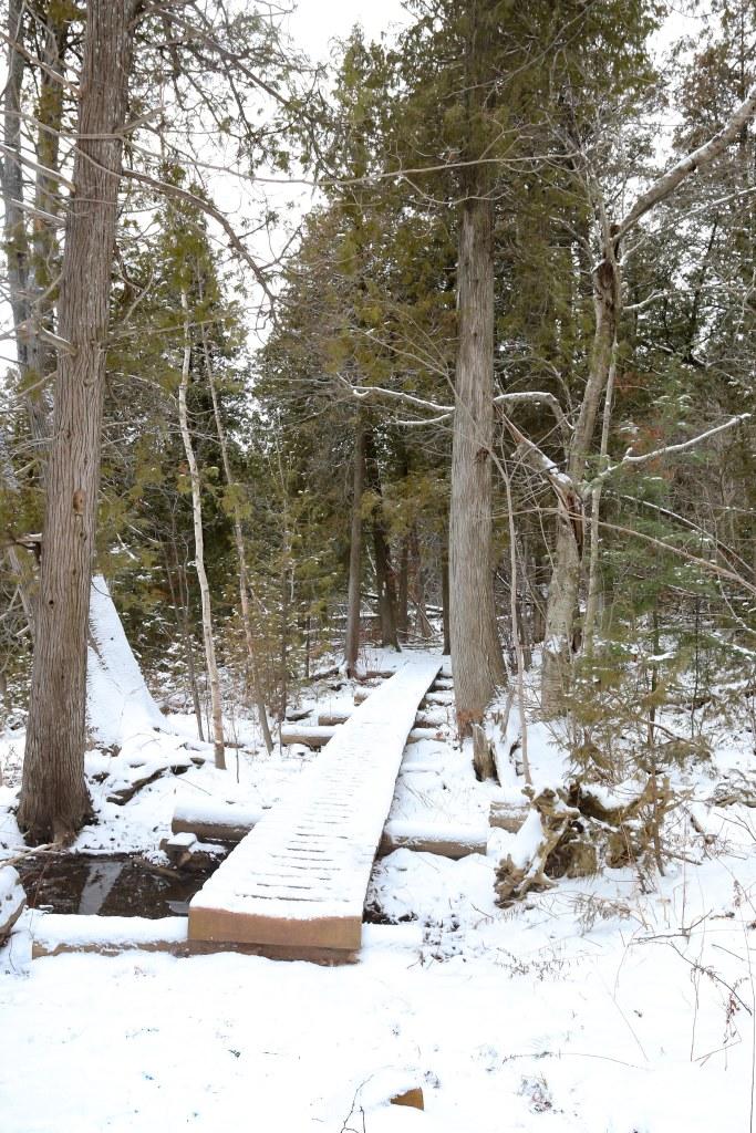 Halton Hiking Trails, Ladies Hiking Ontario, Hiking Ontario, Bruce Trail Hiking, Places to Visit in Ontario,