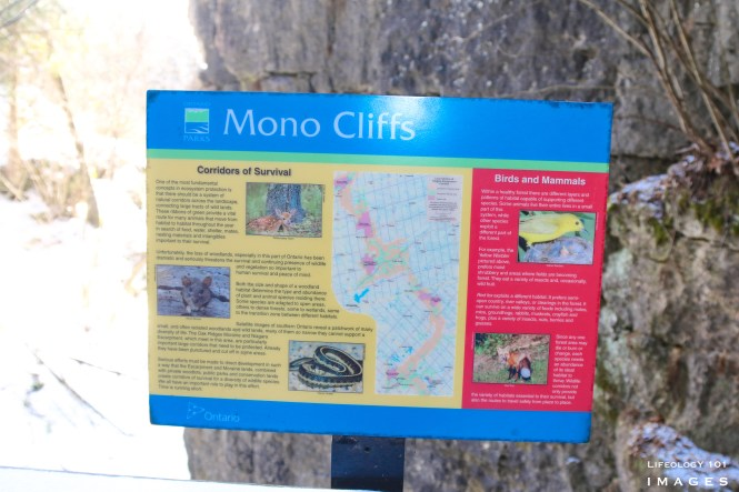 Mono Cliffs Provincial Park, Mono Cliffs Hiking Trails, Hiking Trails Caledon, Hiking Trails Ontario,