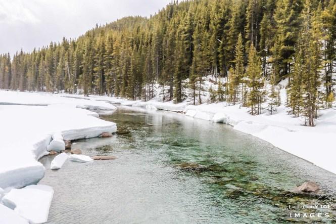 Hiking Trails Lake Louise, Things to Do in Lake Louise, Banff Alberta, Hiking Alberta,