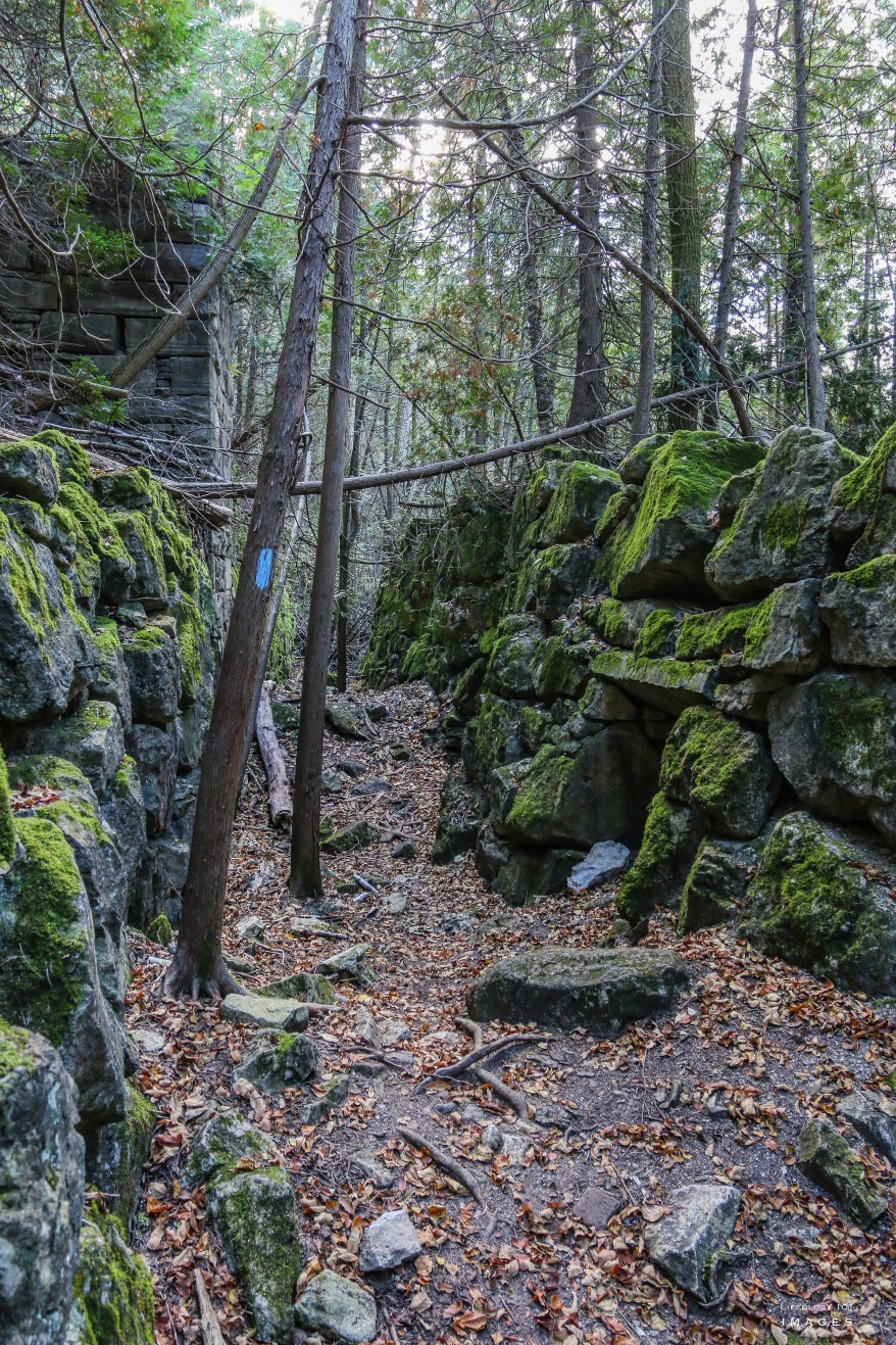 Hiking, Trails, Ontario, Belfountain, Caledon, Kiln, Ruins, Bruce, trail,
