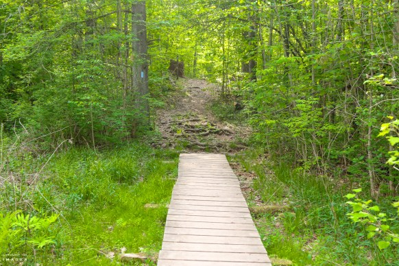 Terra Cotta, The Great Trail, Ladies Hiking Group, Ontario Hiking Trails,